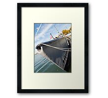 """What Price Freedom"" Framed Print"