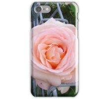 November Rose iPhone Case/Skin