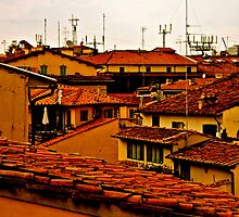 Florentine Terracotta HDR by seanh