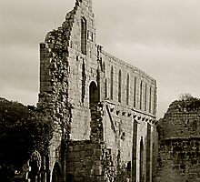 Jervaulx Abbey by newbeltane