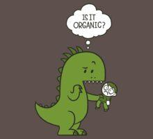 Organic Dinosaur Kids Clothes