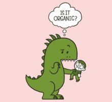 Organic Dinosaur One Piece - Long Sleeve