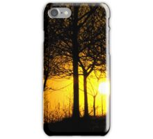 Sunset through the trees, Tandle Hills, Royton, Lancashire iPhone Case/Skin