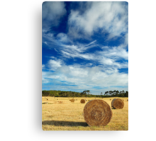 The Bales Revisited Canvas Print
