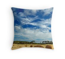 The Bales Revisited Throw Pillow