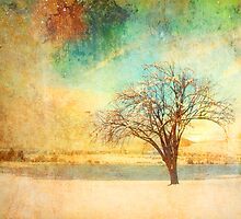Winter Dreams by Tara  Turner