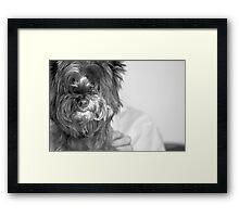 Her Best Friend Framed Print