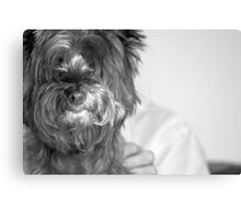 Her Best Friend Canvas Print