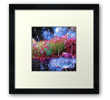 Night Lake Framed Print