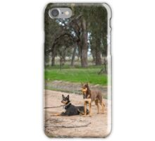 Two Young Kelpie's ....... iPhone Case/Skin