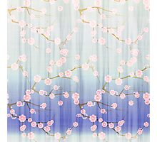 Cute girly pink purple gradient cherries blossom  Photographic Print
