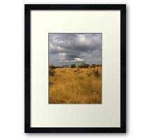 African Landscape - Grass and Sky Framed Print