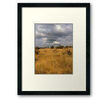 African Landscape - Grass and Sky Framed Print