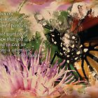 Monarch Butterfly on Top of Flower by MitziAlexander