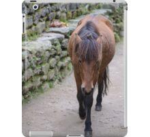 Lone Horse iPad Case/Skin