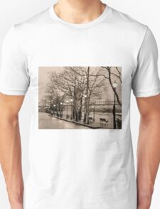 Tribute to Ansel Adams T-Shirt