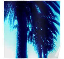 Blue Ombre Palms Poster