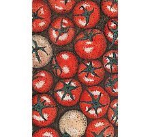 Tomatoes point Photographic Print
