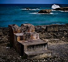 steps to the ocean by Ted Petrovits