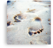 Leaving Your Mark © Vicki Ferrari Canvas Print