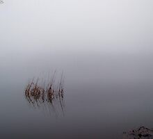 Reflections on the loch in the fog 3 by Kim  Ayres
