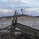 Climbing Fences To Frozen Fields by Tracy Wazny