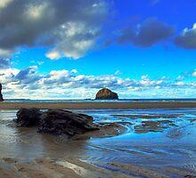 Trebarwith Rock Pool by David Wilkins