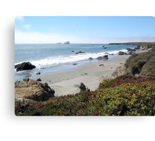 Going Coastal Canvas Print