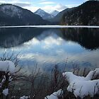 Serenity - Alp Lake - Hohenschwangau, Neuschwanstein - Bavaria, Germany by Gina Livingston