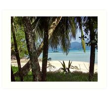 Beach on Seychelles Art Print
