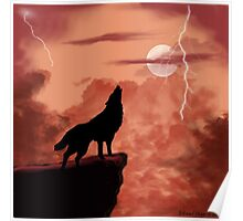 Wolf Howling in the Night Poster