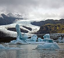 Glacier lagoon of Fjallsjokull - Vatnajokull glacier in Iceland by Marketa Kalvachova