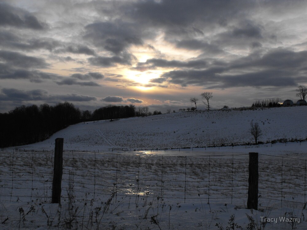 Sun Falling Fast, Snow Clouds Rushing In by Tracy Wazny