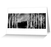 Retuned Clearing Greeting Card