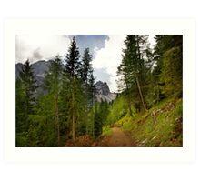 View  Mountain  Ilm Spitze  Art Print