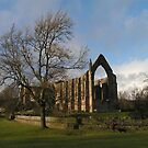 Bolton Abbey - North Yorkshire by Kat Simmons