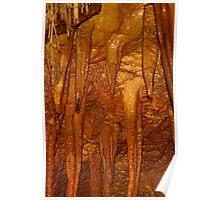 Cave Thingies - Sonoran Desert Museum, Tucson Arizona Poster