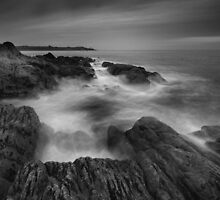 Stormy Cove by Pascal Lee (LIPF)