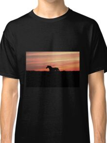 Equine Sunset Classic T-Shirt