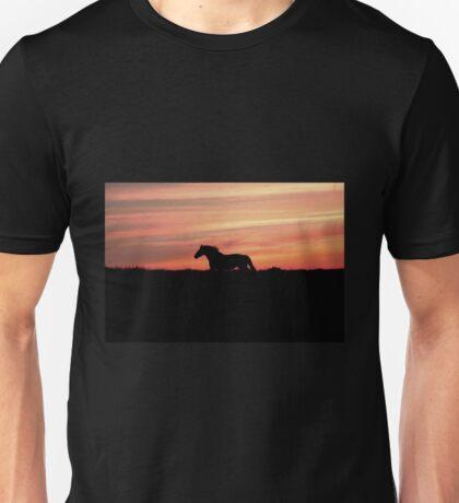 Equine Sunset Unisex T-Shirt