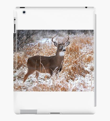 A Regal Stance - White-tailed deer Buck iPad Case/Skin