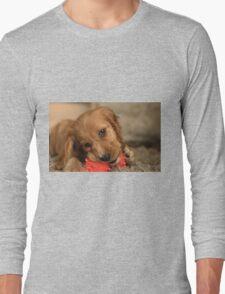 Golden Cocker Spaniel Puppy Long Sleeve T-Shirt