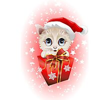 Kitten Christmas Santa with Big Red Gift Photographic Print