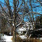 House on the Hill in Winter by Susan Savad