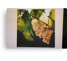 Beauty on Vineyard. Canvas Print