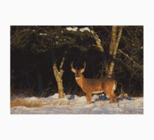 A Winters Sunset - White-tailed deer Buck Kids Clothes