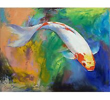 Koi Art Pirouette Photographic Print