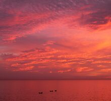 Fishing Under a Red Sky (Morocco) by BGpix