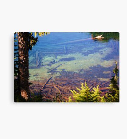 Lake Mowich Federal Park, Washington Canvas Print