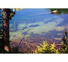 Lake Mowich Federal Park, Washington Photographic Print